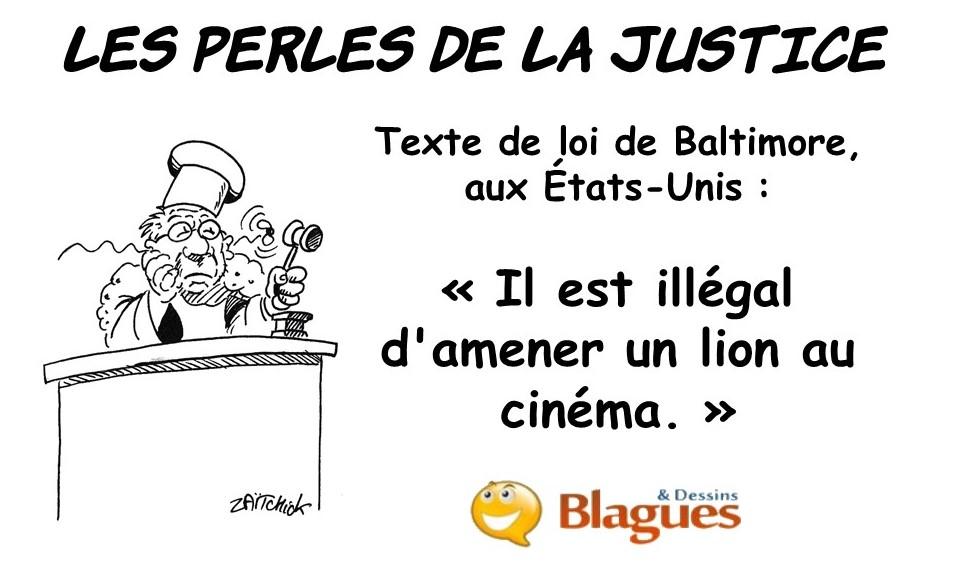les perles de la justice