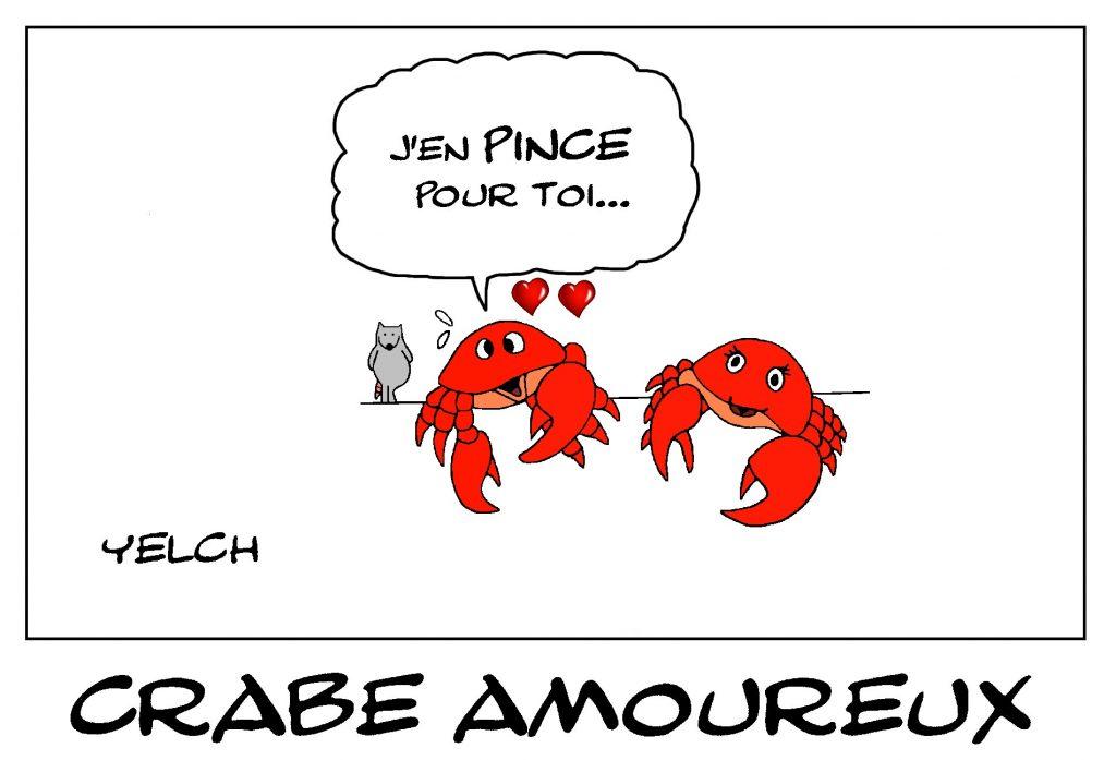 dessin de Yelch sur les crabes, l'amour et les pinces
