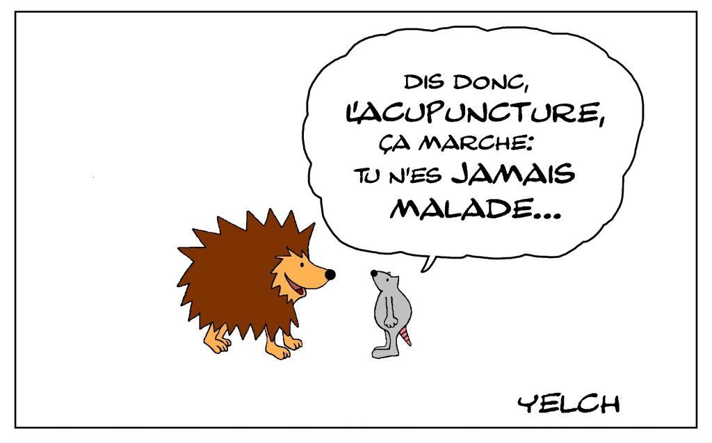 dessin de Yelch sur les hérissons et les bienfaits de l'acupuncture