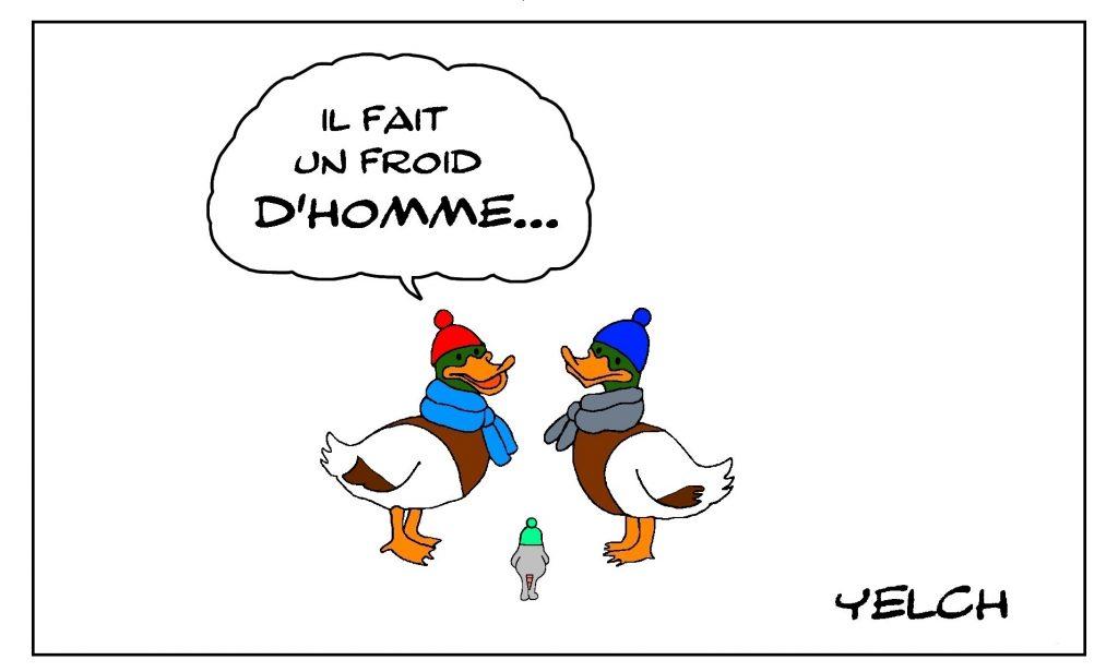 dessin de Yelch sur les canards et le froid de canard