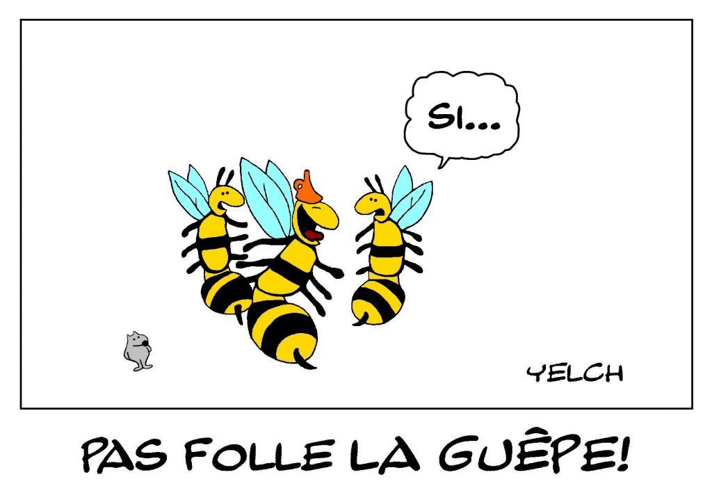 dessin de Yelch sur les guêpes et la folie