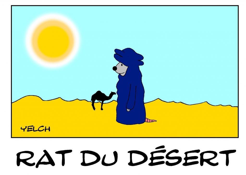 dessin de Yelch sur les rats du désert