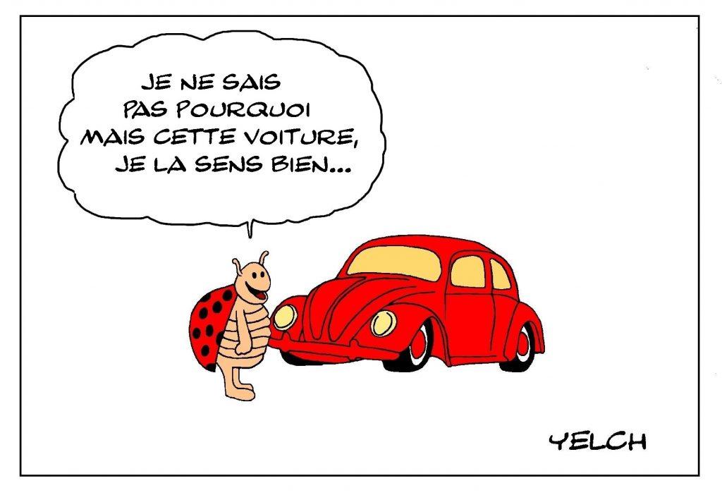 dessin de Yelch sur les coccinelles et les Volkswagen coccinelle