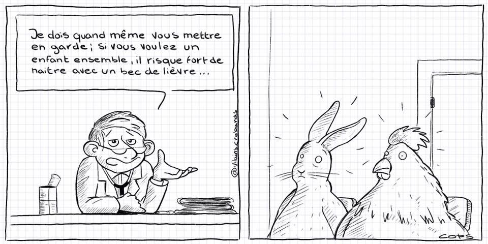 dessin de Cops sur un couple d'un lièvre et d'une poule et les risques de bec de lièvre