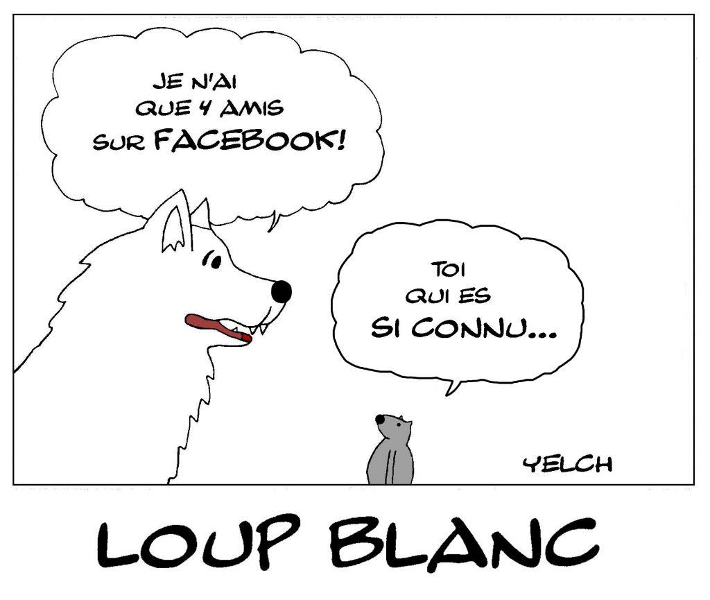dessin de Yelch sur l'expression connu comme le loup blanc