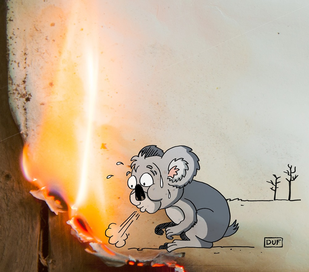 dessin d'actualité humoristique de Duf sur les incendies en Australie