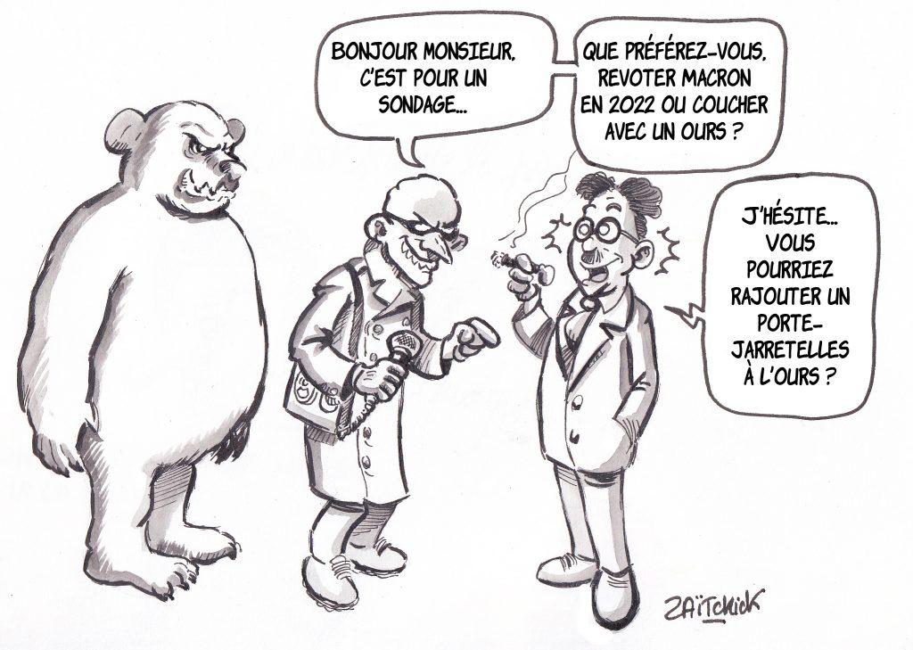 Dessin de Zaïtchick sur un sondeur qui laisse à Groucho le choix entre revoter Macron ou coucher avec un ours