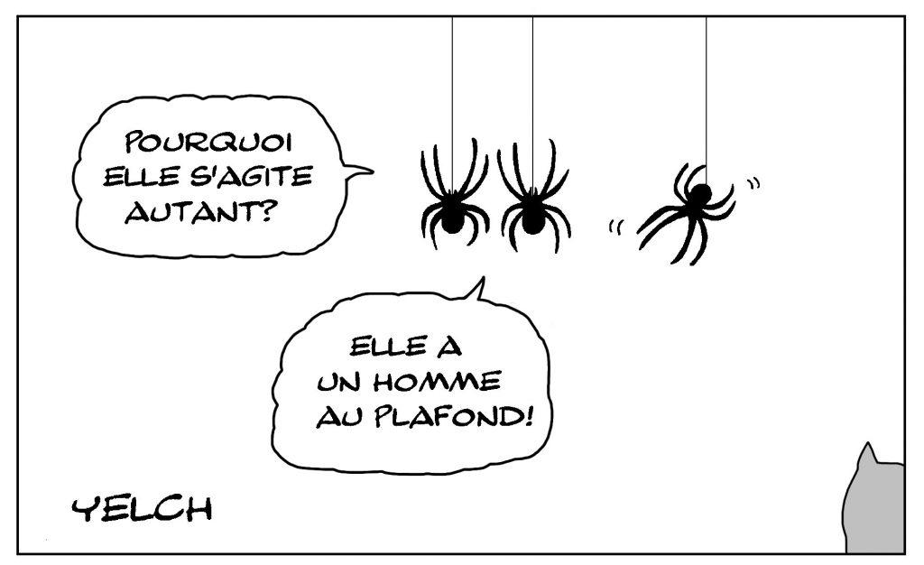 dessin de Yelch sur les araignées et l'expression avoir une araignée au plafond