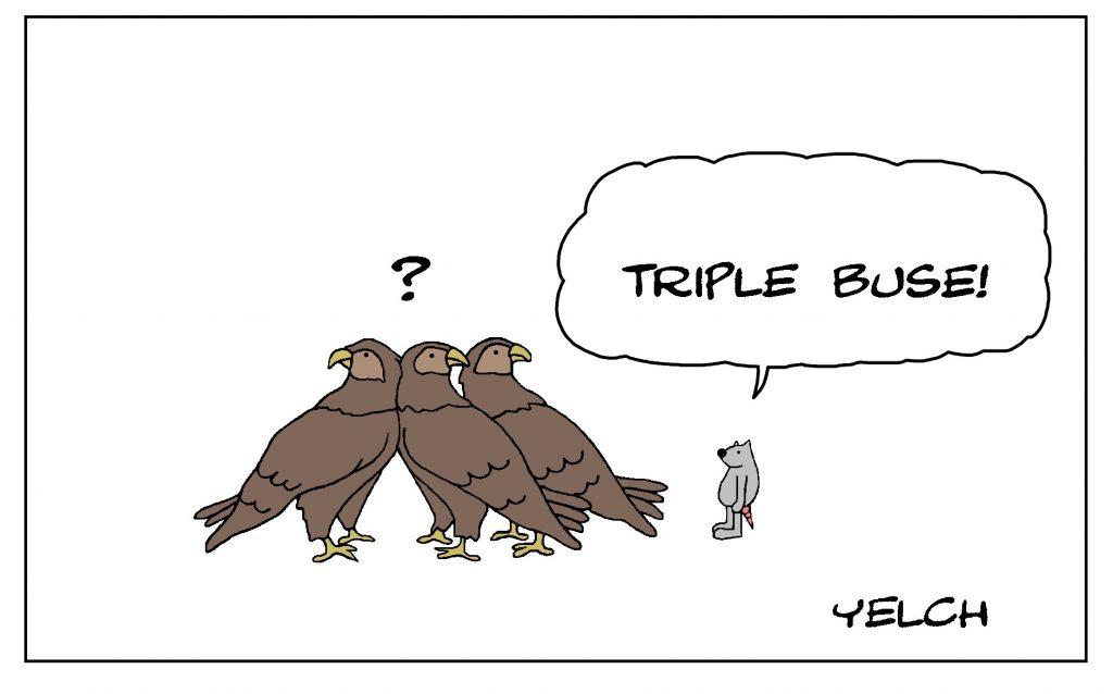 dessin de Yelch sur les buses et les triples buses