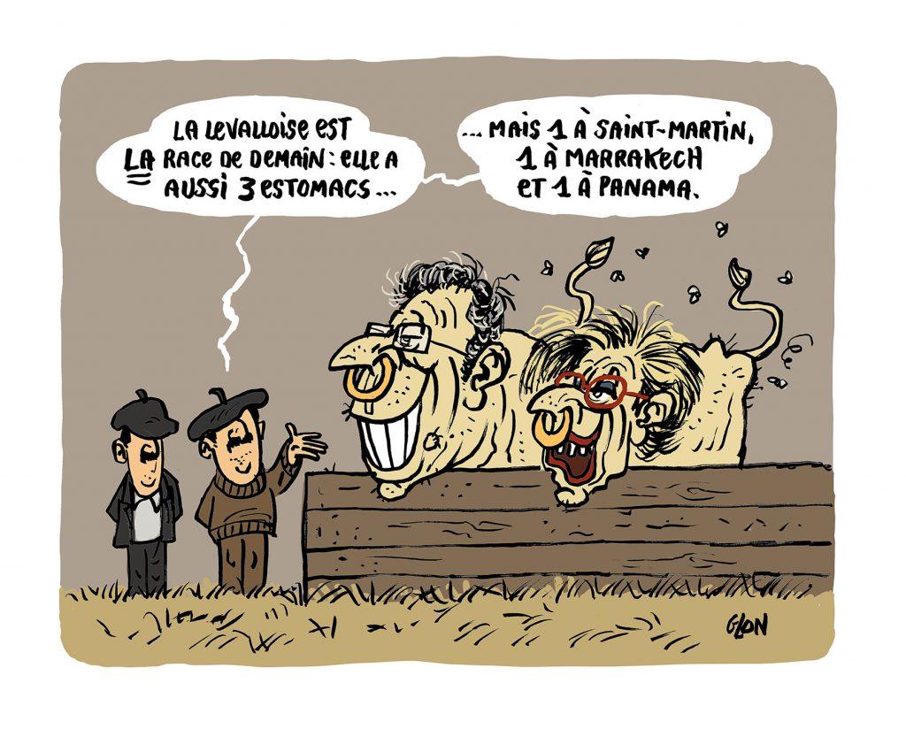 dessin humoristique de Glon sur Patrick Balkany et Isabelle Balkany au Salon de l'Agriculture de Paris