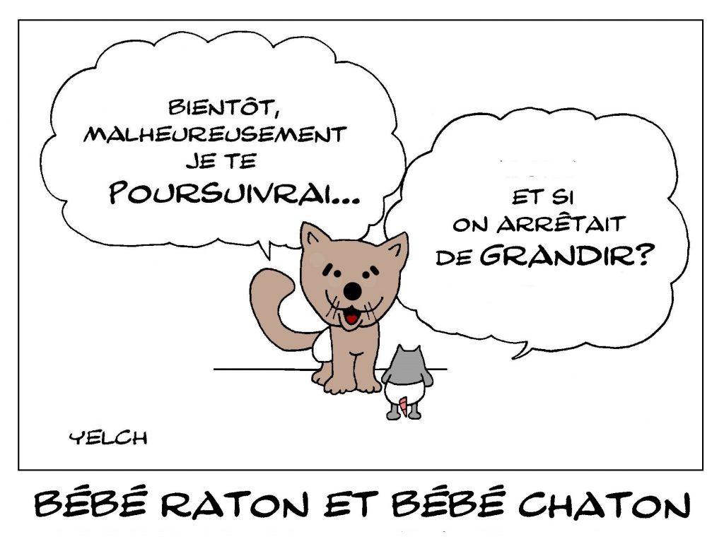 dessin de Yelch sur les bébés chats et les bébés rats