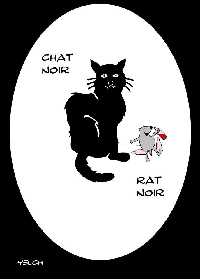 dessin de Yelch sur les chats noirs et l'expression être noir quand on a bu
