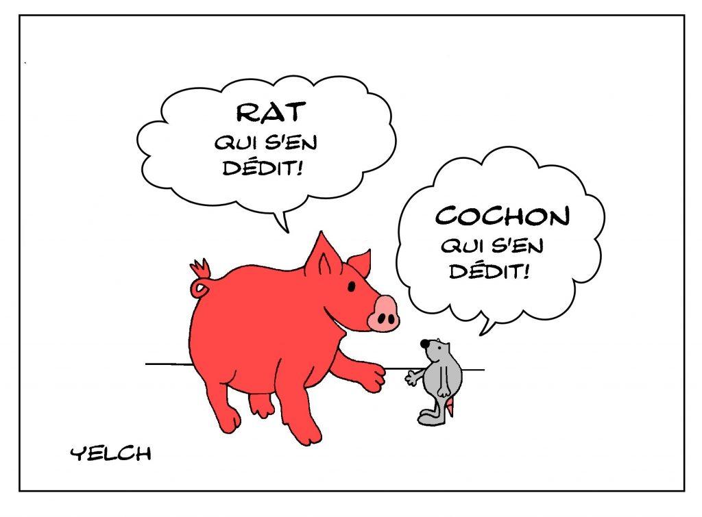 dessin de Yelch sur les cochons et l'expression cochon qui s'en dédit