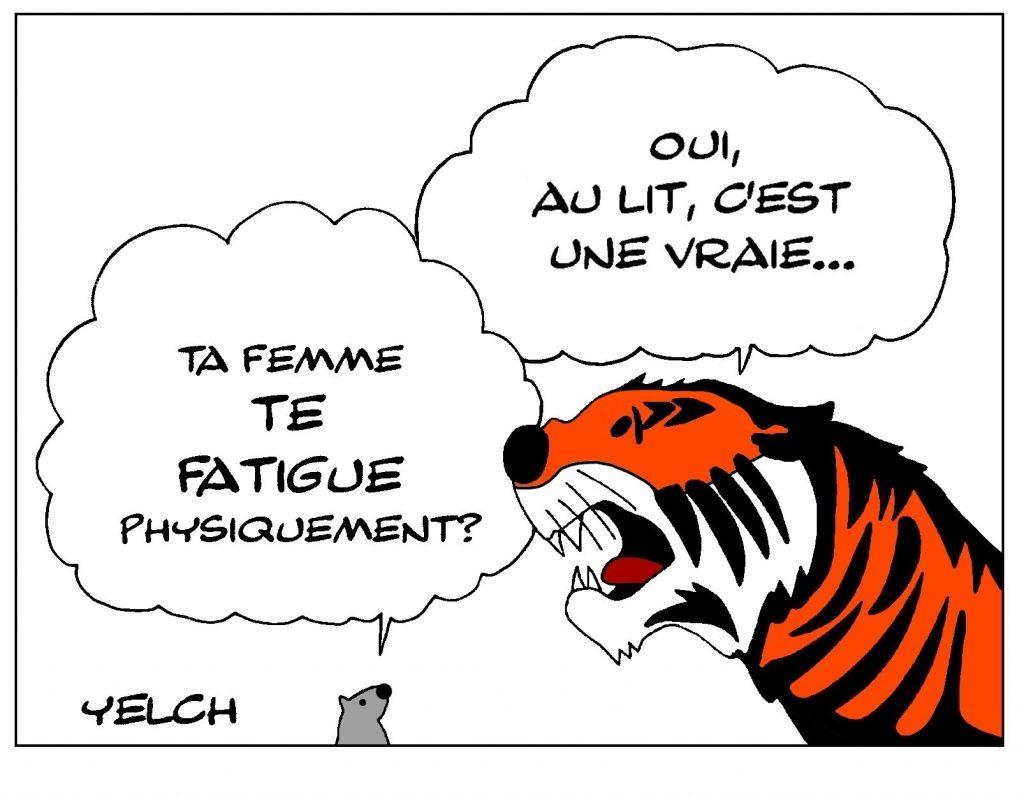 dessin de Yelch sur la sexualité des tigres
