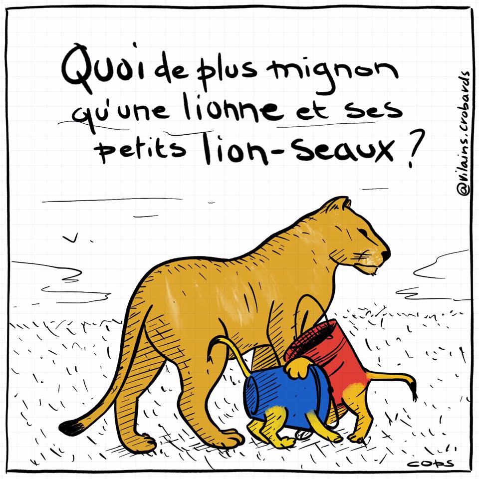 dessin de Cops sur les bébés lions