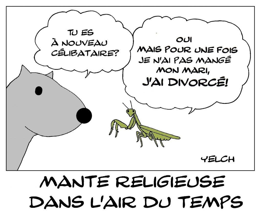 dessin de Yelch sur les mantes religieuses et le célibat