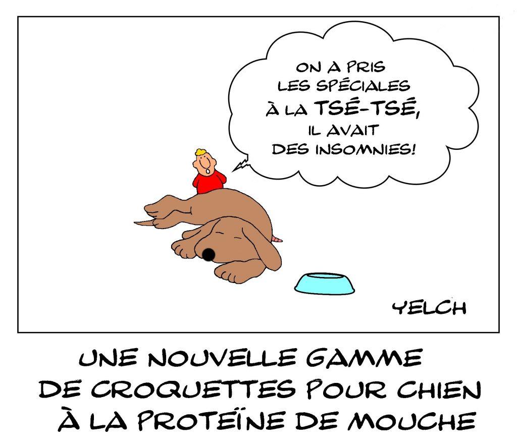 dessin de Yelch sur les croquettes pour chien à base de protéine de mouche