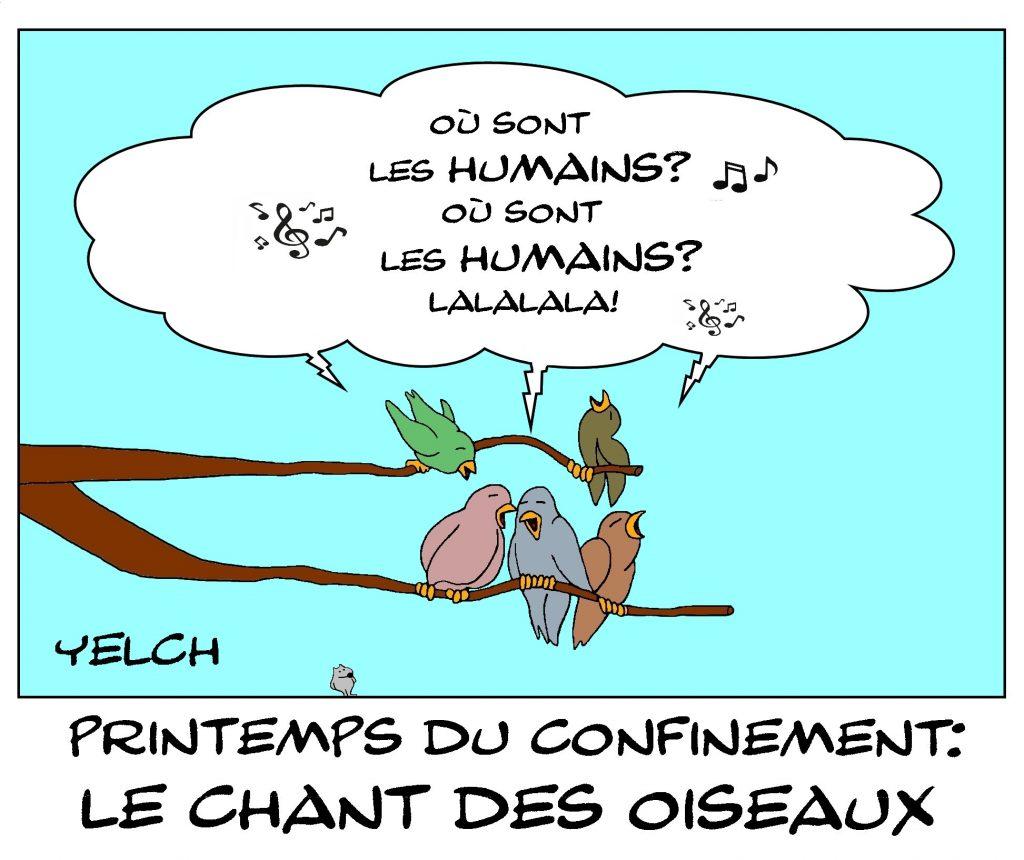 dessin de Yelch sur l'épidémie de Covid-19, le retour du printemps et le chant des oiseaux