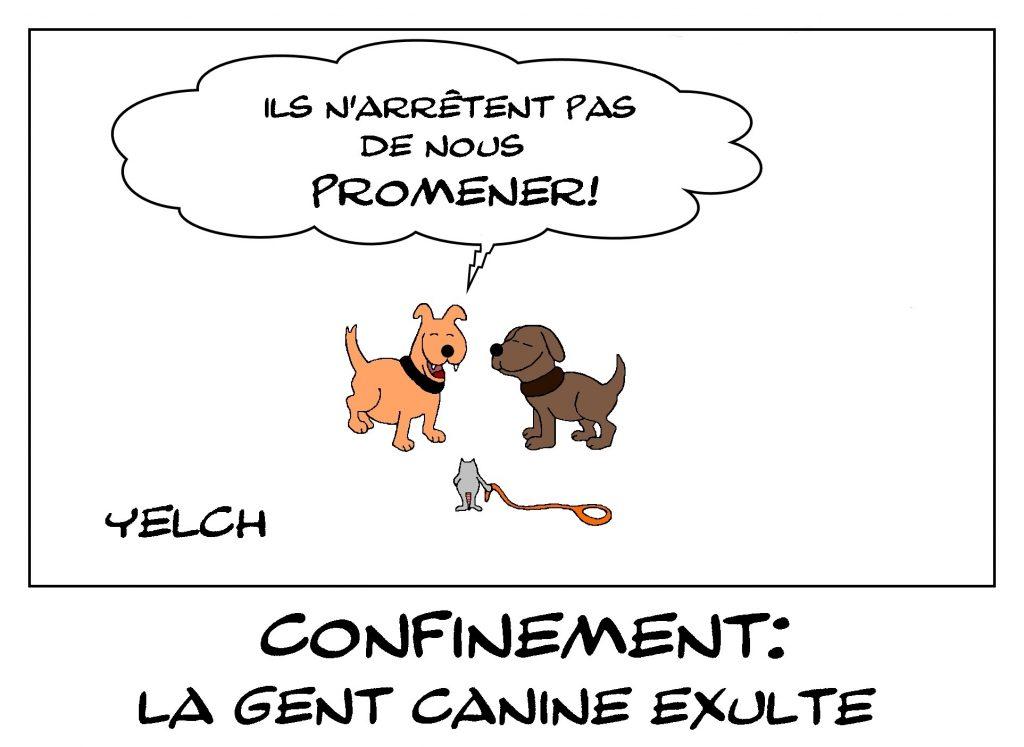 dessin de Yelch sur l'épidémie de Covid-19 et les attestations dérogatoires de sortie pour promener les chiens