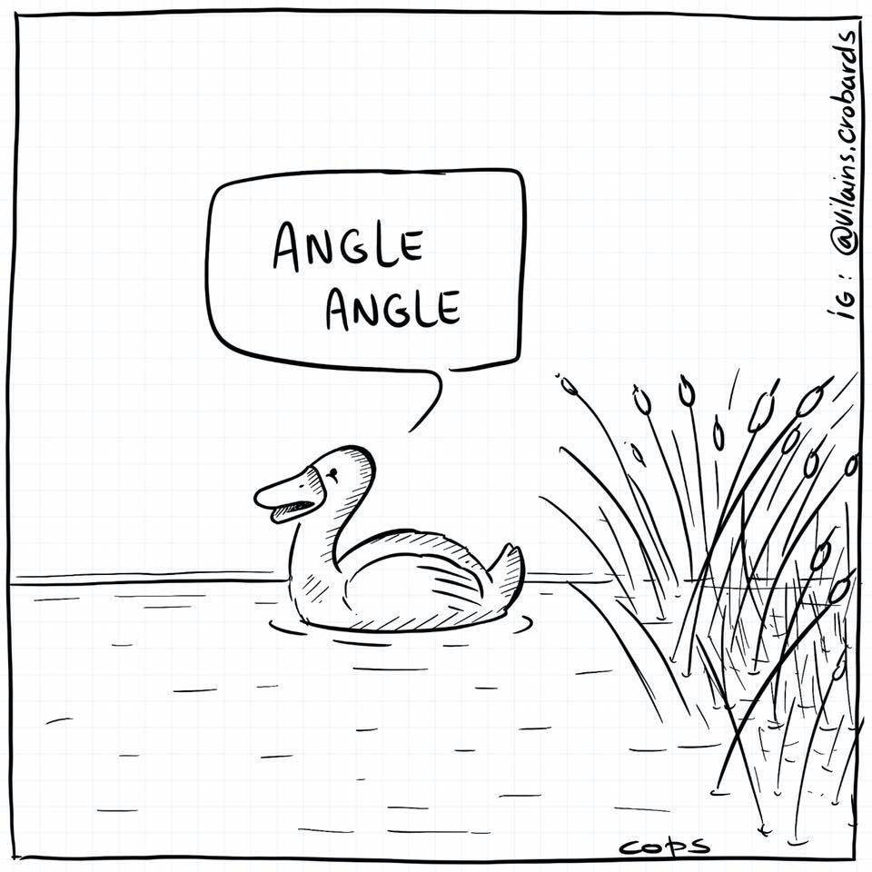 dessin de Cops sur les canards et leur cris