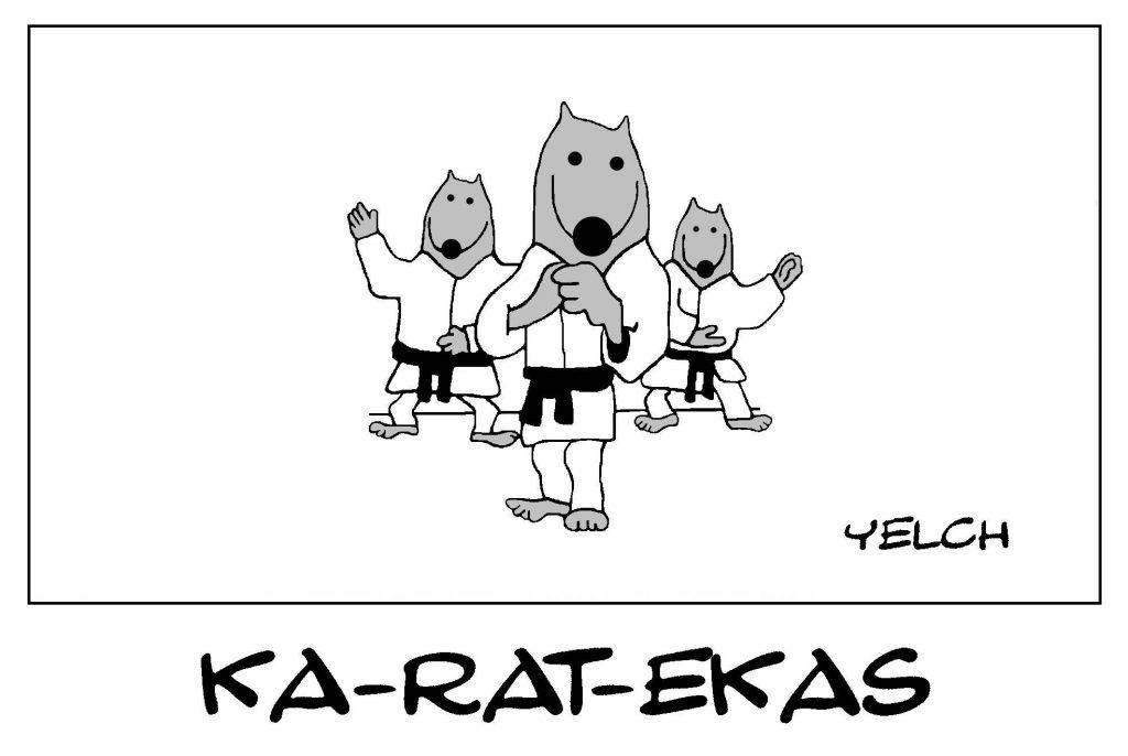 dessin de Yelch sur le karaté et les karatékas