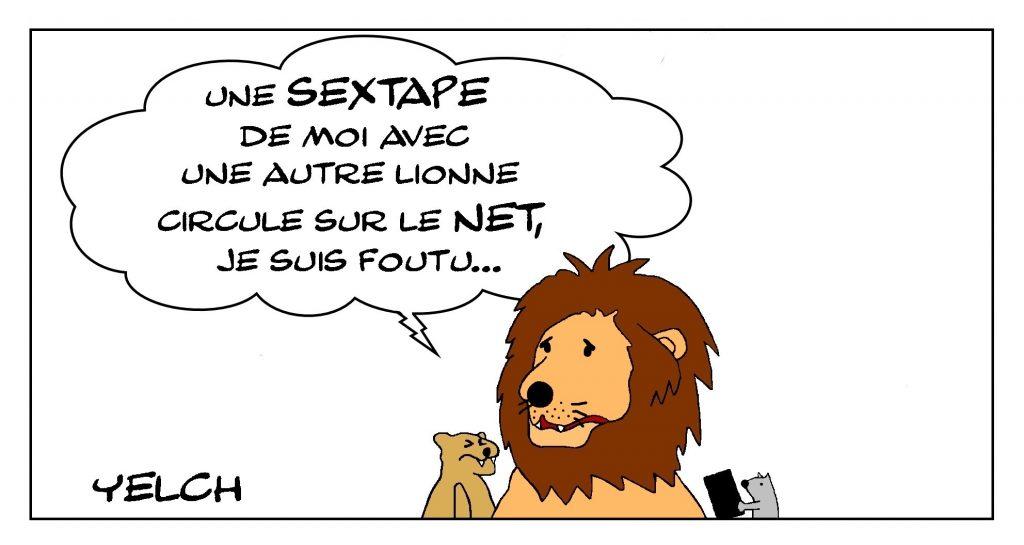 dessin de Yelch sur les sextapes sur Internet et l'infidélité des lions