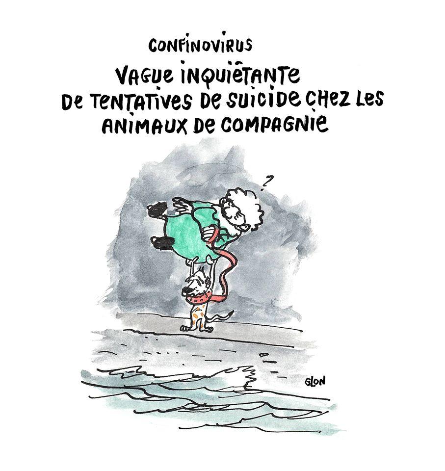 dessin humoristique de Glon sur l'épidémie de coronavirus et la sortie des animaux de compagnies pendant le confinement