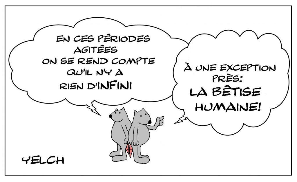 dessin de Yelch sur l'infini et la bêtise humaine