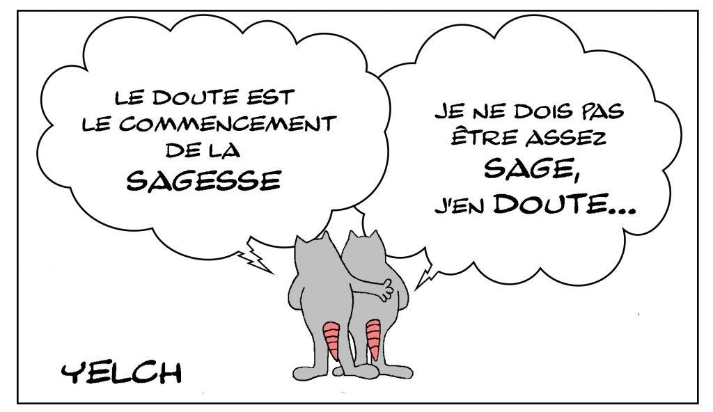 dessin de Yelch sur le doute et la sagesse