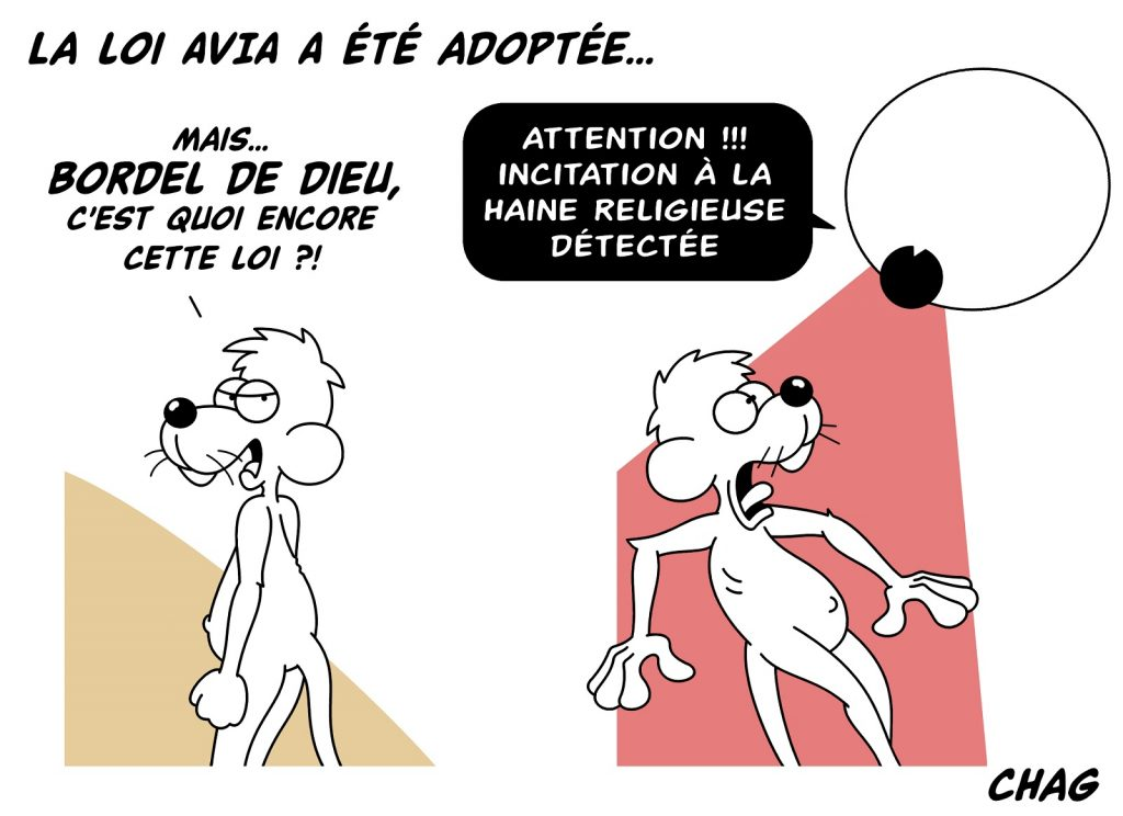 dessin d'humour de Chag sur la loi Avia