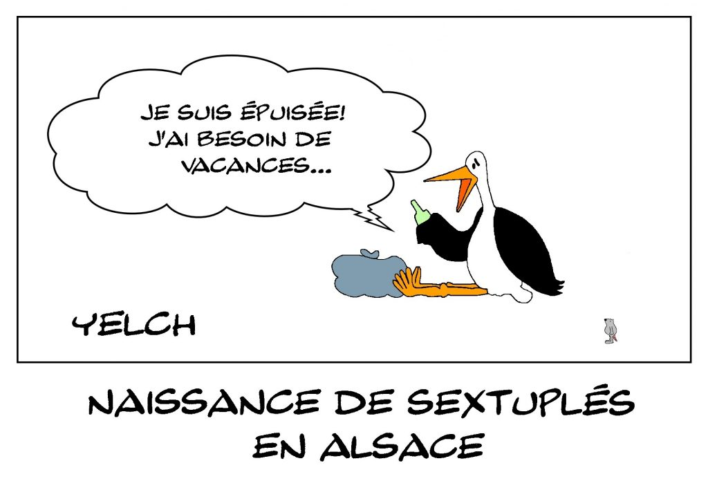 dessin de Yelch sur la naissance de sextuplés à Strasbourg, en Alsace