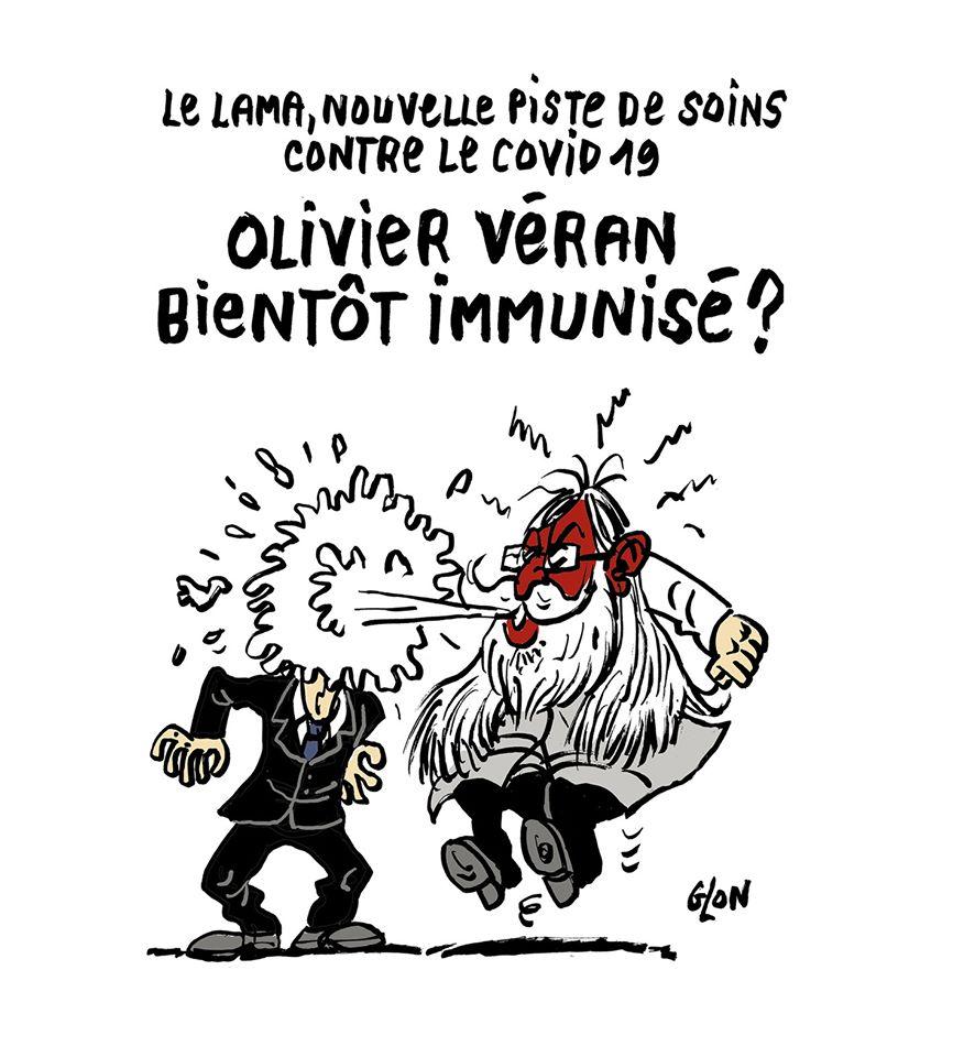 dessin humoristique de Glon sur l'épidémie de coronavirus, les anticorps de lama et Didier Raoult