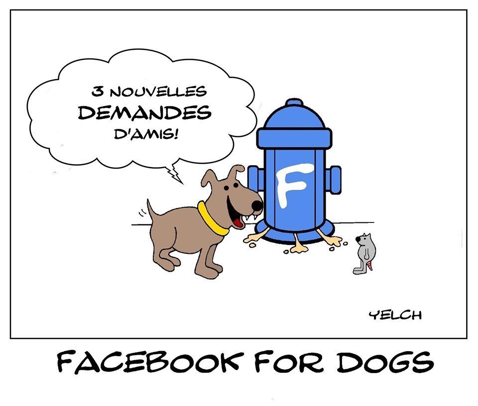 dessin de Yelch sur les chiens et Facebook