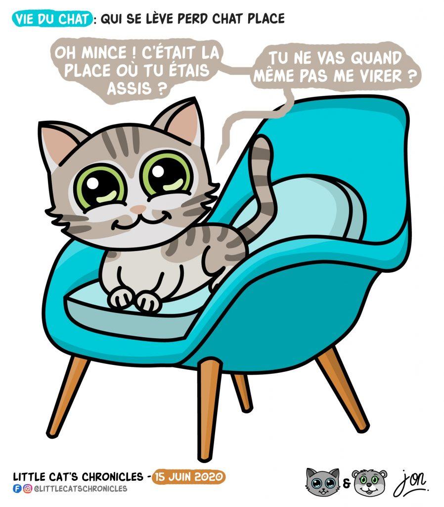 dessin humoristique des Little Cat's Chronicles sur les chats et le vol de place