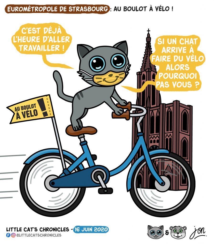 dessin humoristique des Little Cat's Chronicles sur l'utilisation du vélo à Strasbourg