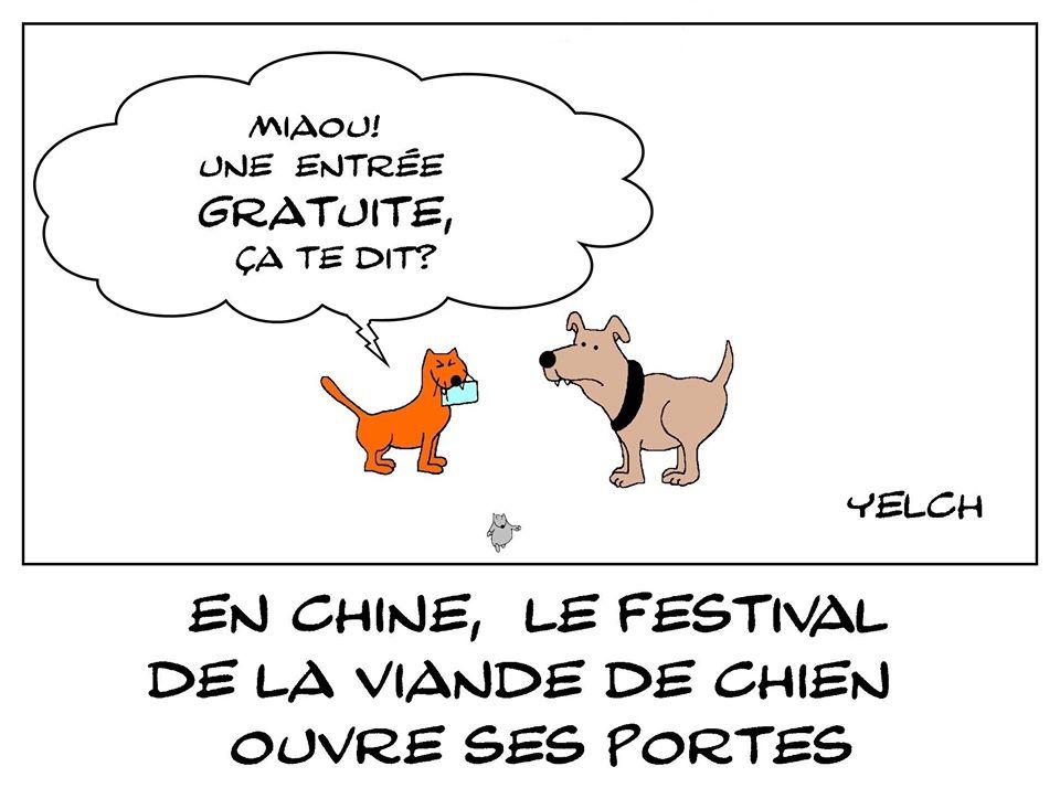 dessin de Yelch sur le festival de la viande de chien à Yulin en Chine