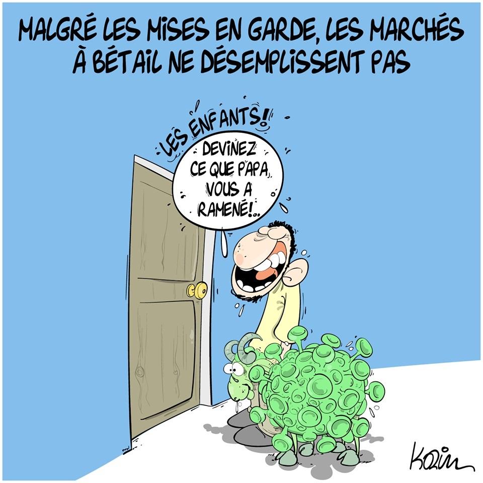 dessin d'actualité humoristique de Karim sur l'épidémie de coronavirus et les marchés aux bestiaux
