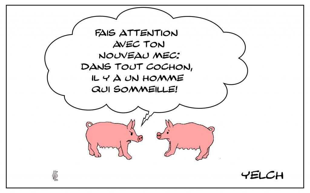 dessin de Yelch sur les cochons et les mecs