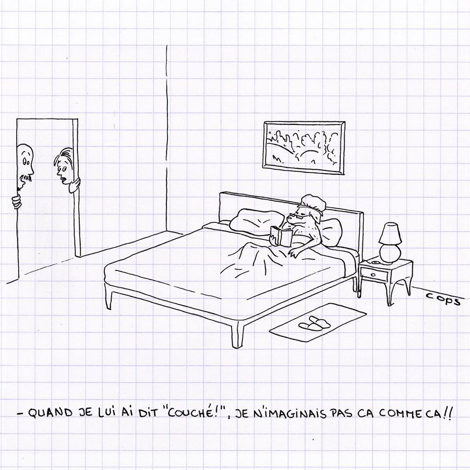 dessin de Cops sur les chiens et le couchage