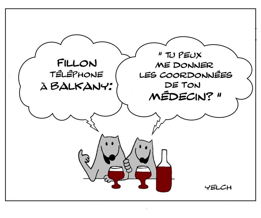 dessin de Yelch sur les condamnations de François Fillon et Patrick Balkany