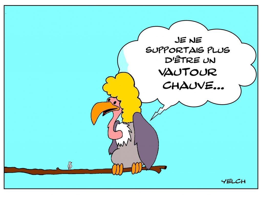 dessin de Yelch sur la calvitie des vautours
