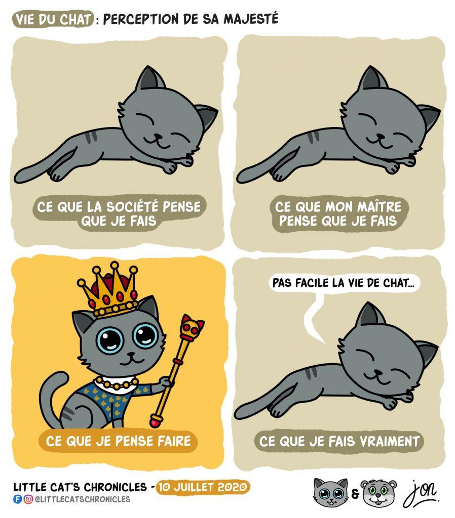 dessin humoristique des Little Cat's Chronicles sur les chats et les siestes
