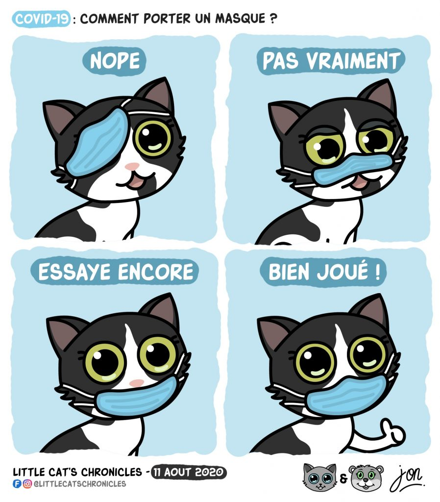 dessin humour petit chat image drôle humoristique little cat blague