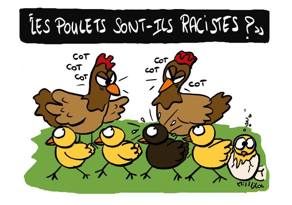 blague dessin humour racisme police image drôle poulets
