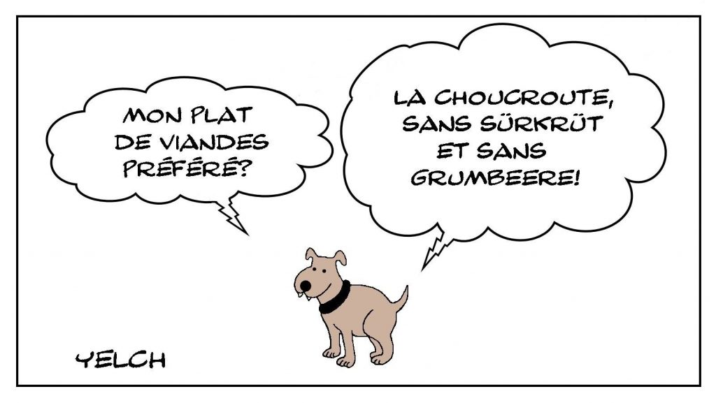 dessin presse humour Seppi chien alsacien image drôle Alsace
