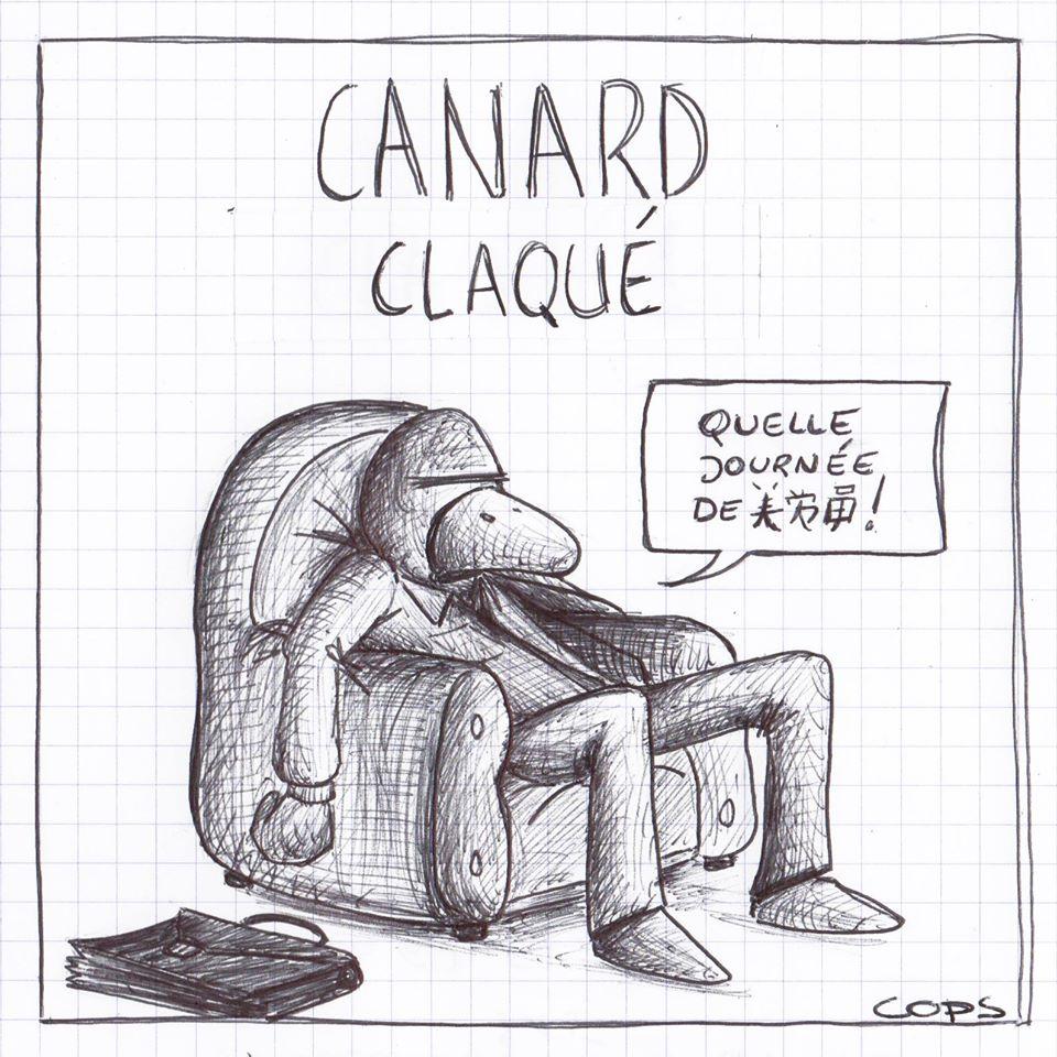 gag image drôle canard laqué dessin blague humour journée de merde