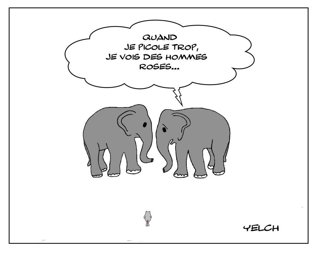 blague dessin éléphant rose humour homme image drôle alcoolisme