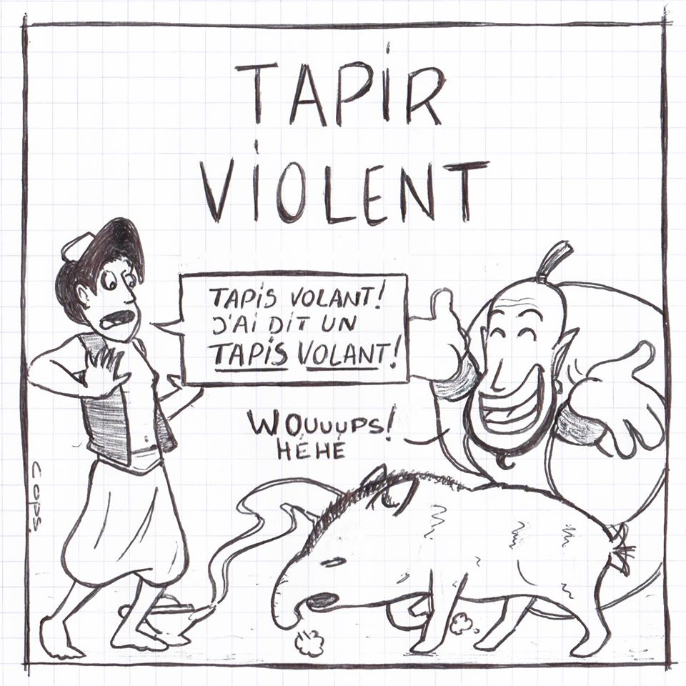 gag image drôle Aladin blague humour génie tapis volant tapir