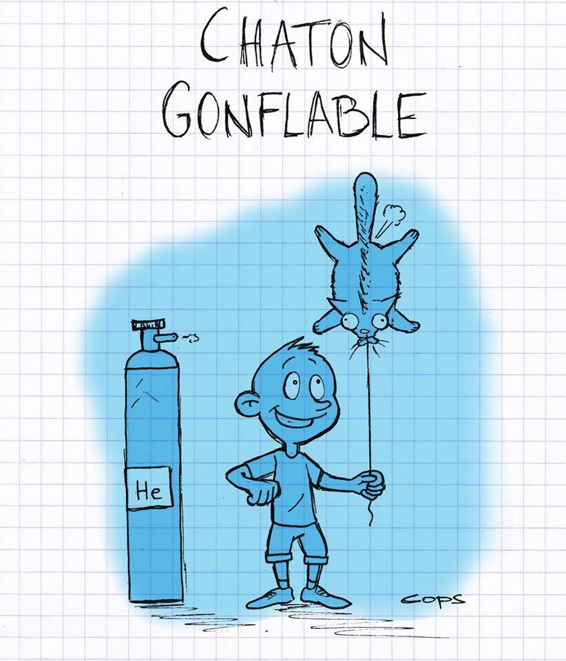 gag image drôle chaton dessin blague humour château gonflable