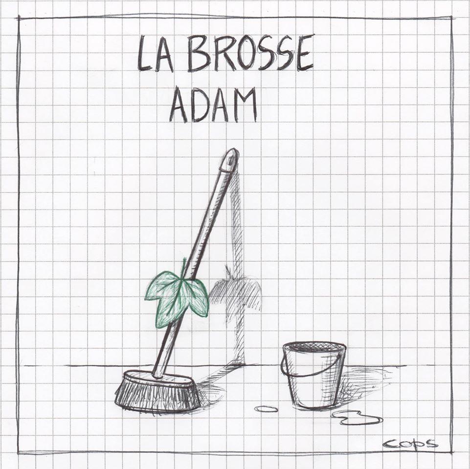 gag image drôle brosse Adam dessin blague humour brosse à dents